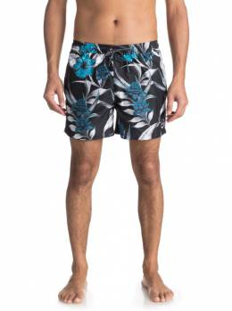 Шорты мужские QUIKSILVER Puavolley15 M Black 3613373360847