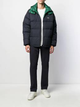 Lacoste - hooded padded jacket 695660CK956663390000