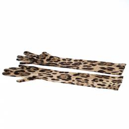 Dolce and Gabbana Brown Leopard Print Wool Long Gloves S 271301