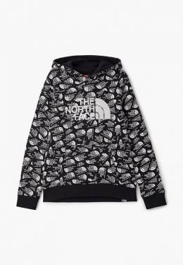 Худи The North Face TA33H4LR5