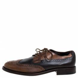 Tod's Brown Brogue Leather Lace Up Derby Size 41 347191