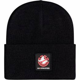 Шапка Element Ghostbusters Dusk Beanie FLINT BLACK 2021 3665601259300