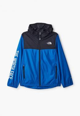 Куртка The North Face T93NKGWXN