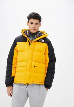 Пуховик The North Face TA4QYX56P